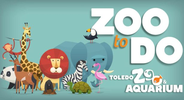 NBS Toledo Zoo-to-Do 2017