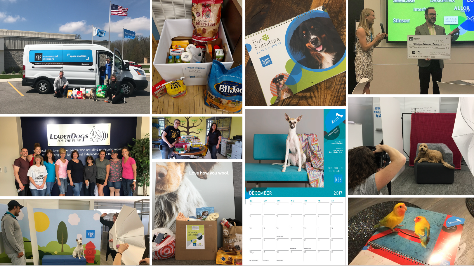 NBS Pet Year in Review 4