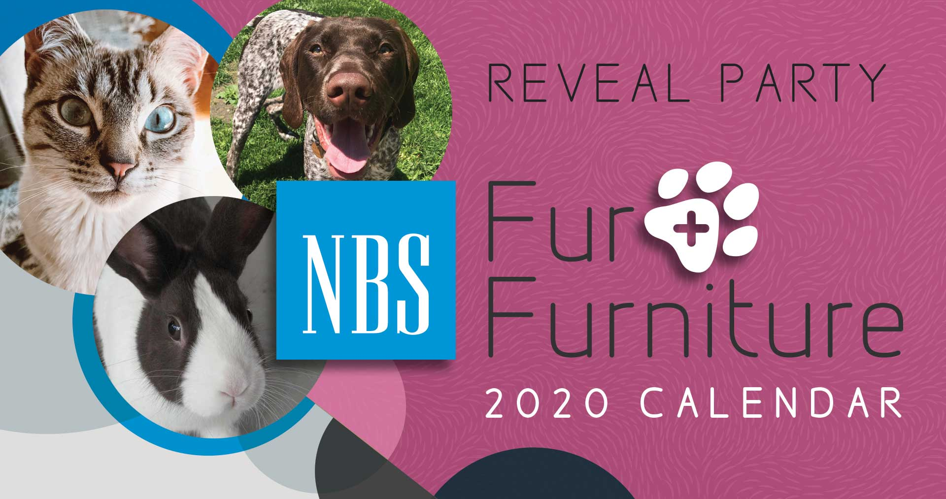 NBS-Pets-Fur-Reveal-DL-2019