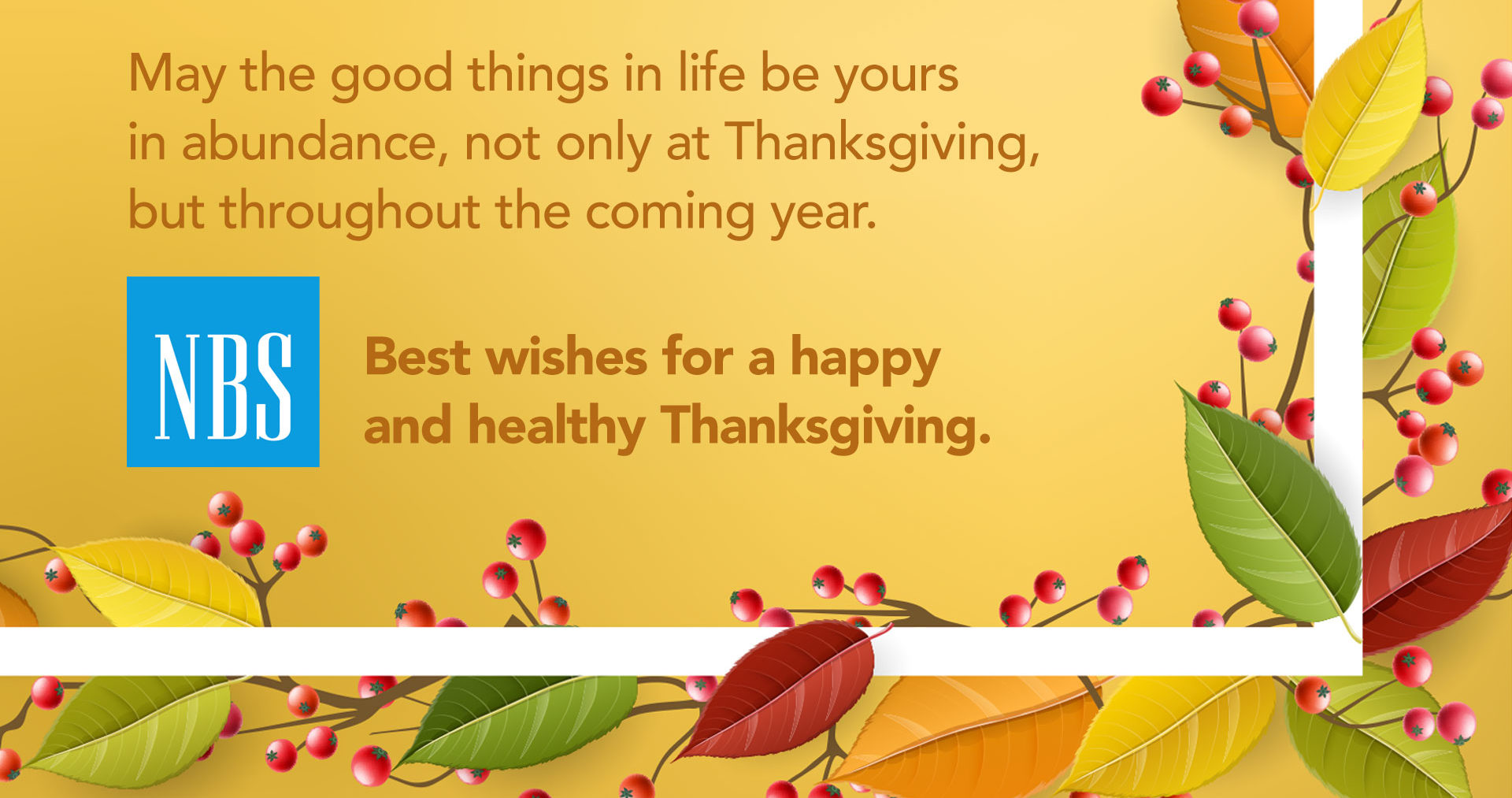 NBS_Thanksgiving2018_HDL